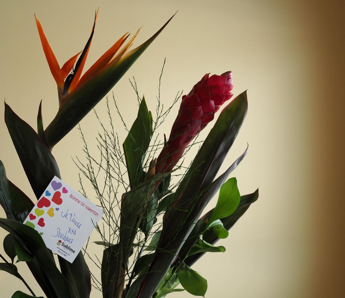 ELLE m'offre des fleurs… - SHE gives me flowers…