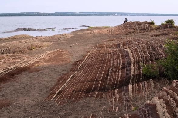 à marée basse - at low tide