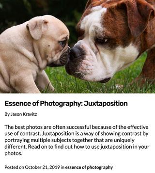 L'essence de la photographie | La juxtaposition des sujets
